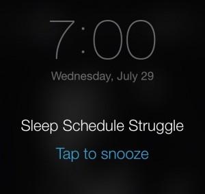 Sleep Schedule Picture